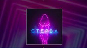 Текст песни Стерва Леша Свик