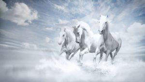 Текст песни Три белых коня